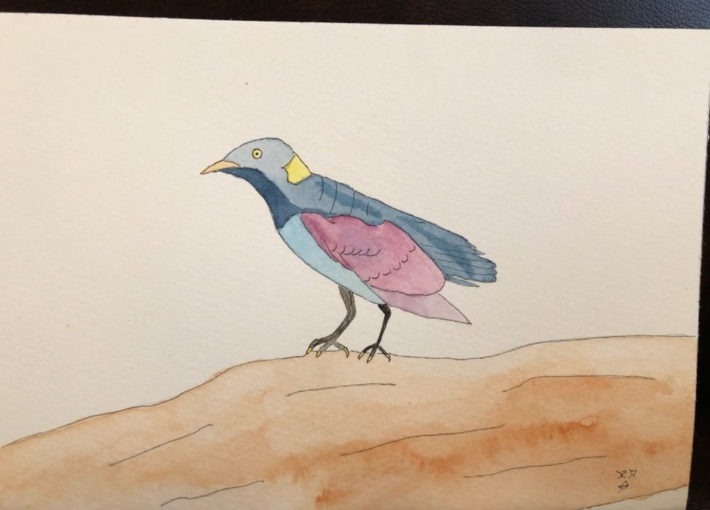 DIY watercolor postcards bird